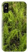 A Field Of Ferns IPhone Case