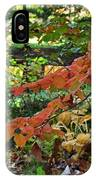 A Flame In The Forest IPhone Case