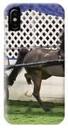 A Flashy Pony IPhone Case