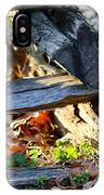 A Foraging Raccoon IPhone Case