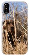 A German Shetland Searches For Pheasant IPhone Case