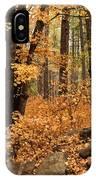 A Golden Autumn Forest  IPhone Case