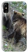 A Grizzly Moment IPhone Case