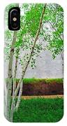 A Grove Of Birches 2 IPhone Case