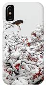 A Little Bird So Cheerfully Sings IPhone X Case