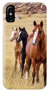 A Mare And Two Friends IPhone Case