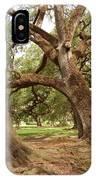 A Maze Of Oak Trees  IPhone Case