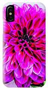 A Painted Dahlia IPhone Case