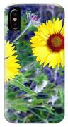 A Pair Of Wild Susans IPhone Case