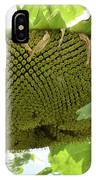 A Perfect Pattern  IPhone Case