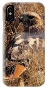 A Red Tailed Hawk  IPhone Case