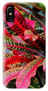 A Rich Composition IPhone Case