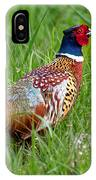 A Ring-necked Pheasant Walking In Tall Grass IPhone Case