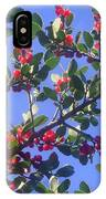 A Sky Full Of Holly IPhone Case