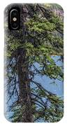 A Slice Of Pine IPhone Case
