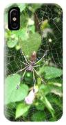 A Spider Web IPhone Case