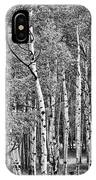 A Stand Of Aspen Trees In Black And White IPhone Case