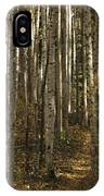 A Stand Of Birch Trees Show IPhone Case