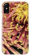 A Touch Of Yellow On Pink Mums IPhone Case