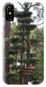 A Towering Tree IPhone Case