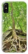 A Tree And It's Roots IPhone Case