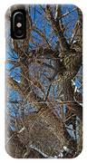 A Tree In Winter- Horizontal IPhone Case