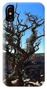 A Tree On The Edge IPhone Case