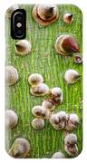 A Trunk Of Thorns IPhone Case