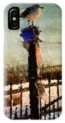 A Winter Sea Gull Portland Maine IPhone Case