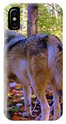 A Wolf Gazes Back IPhone Case