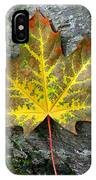 A Work Of Nature's Art IPhone Case