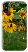 A Bit Ragged, Their Yellow Glory IPhone Case