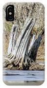 Aboriginal Stumps IPhone Case