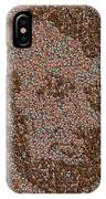 Abraham Lincoln Penny Mosaic IPhone Case
