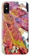 Abstract Autumn Leaf 2 IPhone Case