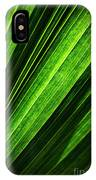 Abstract Of Green Leaf Of Exotic Palm Tree IPhone Case
