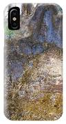 Abstraction In Color And Texture From Wet Rock IPhone Case