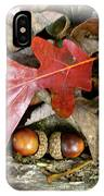 Acorns And Oak Leaves IPhone Case