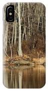 Across Skymount Pond - Autumn Browns IPhone Case