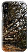 Across The Path IPhone Case