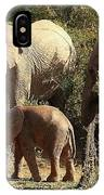 Addo Elephant Family IPhone Case