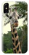 Adorable Grinning Giraffe IPhone Case