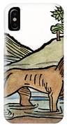 Aesop: Dog & Shadow, 1484 IPhone Case