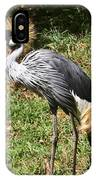 African Crowned Crane Poising IPhone Case