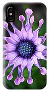 African Daisy - Hdr IPhone Case