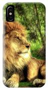 African Lion  IPhone Case