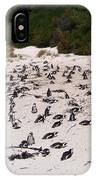 African Penguins IPhone Case