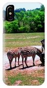 African Zebras Feeding IPhone Case
