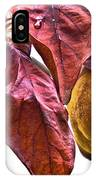 After Rain - Fall In Mendocino Orchard IPhone Case