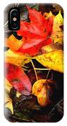 After The Rains Of Autumn IPhone Case